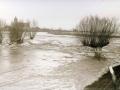 overstroming-zalk_8_jan_1926
